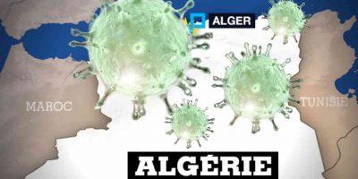 algérie coronavirus