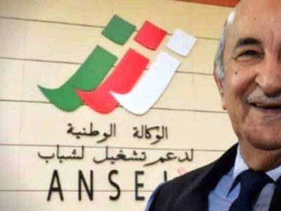 Ansej Algérie