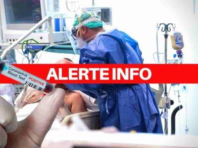 coronavirus algérie cas