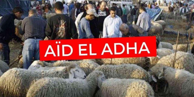 algérie aïd adha 2020