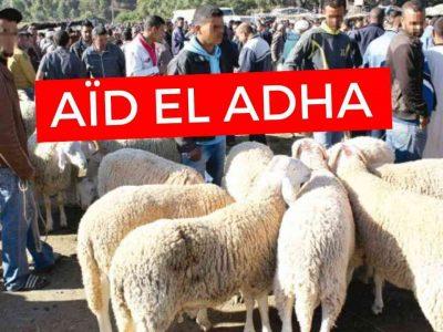 aïd prix mouton algérie
