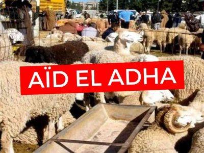 Aïd El Adha Algérie