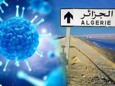 Coronavirus Algérie contaminations wilayas