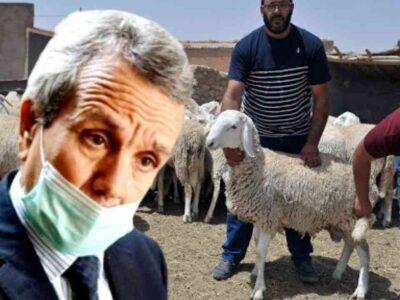 algérie annulation aïd adha