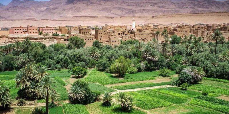 Algérie désert agricole