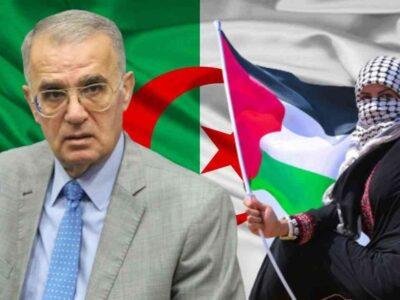 algérie monde arabe palestine