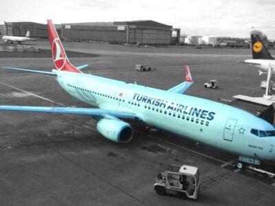 Turkish Airlines vol Algérie