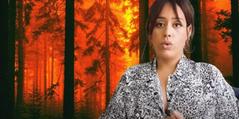 incendies algérie amel bent